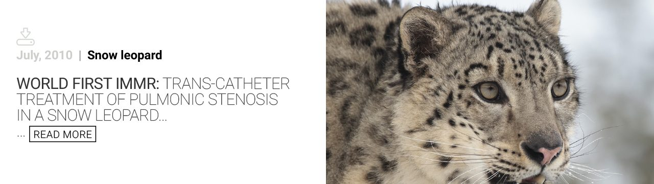 Newsletters snow-leopard - immr